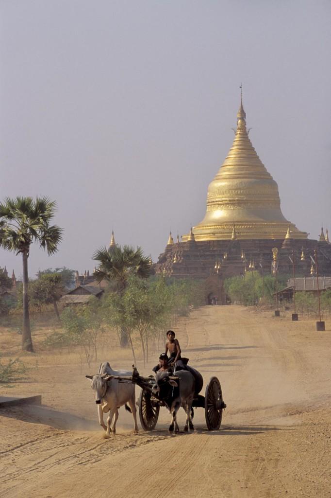 MYANMAR(BURMA), PAGAN, VIEW OF PAGODA, BURMESE BOY ON OX CART